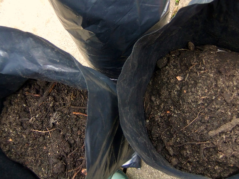 free compost from west lothian council