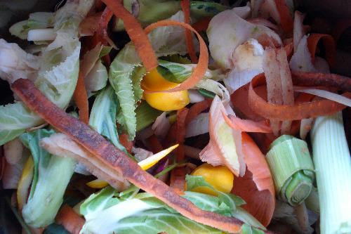 organic vegetable scraps