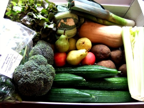 Juice Friendly Veg Box